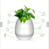 Smart Music Flower Pot Bluetooth Intelligent Real Plant Touch Play LED Light Flowerpot