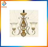 Modern Style All-Match House Design Ceiling Chandelier Lights