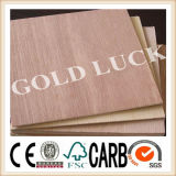 9mm 12mm 15mm 18mm Bintangor Plywood for Furniture and Decoration