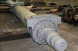 Hydraulic Cylinder for Marine