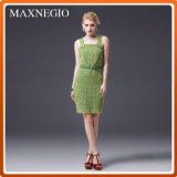 Elegant Fashion Lace Evening Party Dresses for Lady (3-15553)