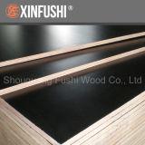 Poplar Core Melamine Glue Concrete Plywood Board