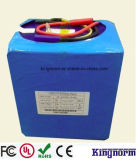 24V 20ah/30ah/40ah/50ah/60ah/100ah/120ah Lithium Phosphate Battery for EV Scooter