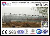 Wind Resistance Modular Design Garden Polycarbonate Sheet Greenhouse