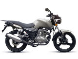 Powerful Street Bike, EEC Bike, HJ125-8A General Motorcycle