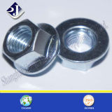 Galvanizing Plated Fastener Hex Flange Nut