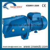 Jsp-255A Self-Priming Jet Water Pump for Domestic Use