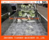Vegetable Washer/Vegetables Washing Machine/Lettuce Washer/Cabbage Washer/Fruit Washer Tsxq-50