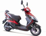 Fashionable Design Lead-Acid Battery Electric Scooter (TDR276Z)