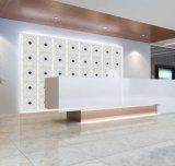 Wall Plastic Decorative Panels Model 1051-1