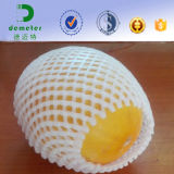 China Supplier Mango Foam Fruit Net Cover