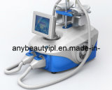 Cryolipolysis Body Slimming Machine SL-2 with Medical CE Approval