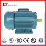 Ys Series Three-Phase AC Asynchronous Motor with Wholesale Price