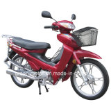 110cc/100cc/70cc/50cc Motorcycle (Dream-110)