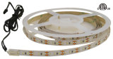 LED Strip 3014 SMD Light with ETL Certification (IP 22, 12W /M, 120 LEDs/M)