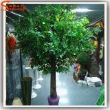 Professional Manufacturer Fiber Glass Artificial Banyan Tree