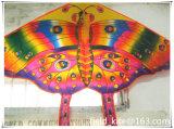 2016 Butterfly Kite Sale