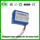 Rechargeable Battery Li-ion Battery Pack Portable Washing Machine Pressure Washer