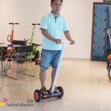 Two Wheel China New Self Balance Electric Vehicle