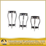 Luxury Glass Stainless Steel Flower Shelf