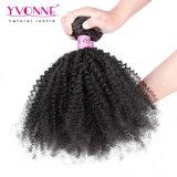 Wholesale Remy Virgin Brazilian Hair Extension