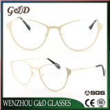New Design Metal Glasses Eyewear Eyeglass Optical Frame for Lady and Women Double Color