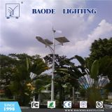 Best Selling Wind Solar Hybrid LED Street Light (BD-TYN0001)