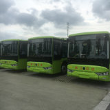 Classic Electric 10 Meters Bus Tourist Bus with Battery System