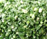 Freeze-Dried Green Scallion; Dehydrated Green Scallion; Fd Scallion