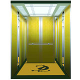 Luxury Passenger Elevator From Professional Manufacturer