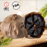 Organic Antiviral Herbal Extract Medicine Black Garlic Powder 700g