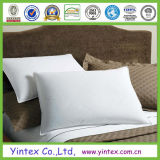 Feather and Down Cotton Pillow (AD-4)