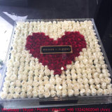 361 Holes Clear Acrylic Rose Flower Display Box