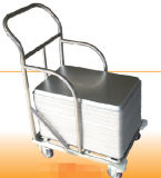 Stainless Steel Trolley with Wheels (SN1980)