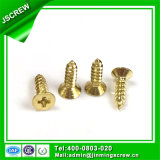 M5 Flat Head Brass Self Tapping Screw for Wooden Furniture