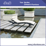 Outdoor Patio Furniture, Pool Adjustable Wicker Chaise Lounge Chair with Cushion (J4285)