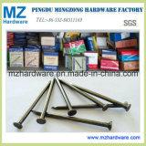 Q195 BWG3-20 Bright Polish Galvanized Common Iron Wire Nail