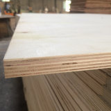 Poplar Core Plywood Grade for Packing and Packing Use (18X1220X2440mm)
