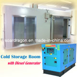 Cold Room with Diesel Generator Deign (SG-DCWF-63)