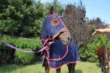 100% Cotton Show Set, Cotton Summer Rug, Horse Rug (NEW-14)