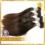 Unprocessed Virgin Remy Human Hair Weft (TFH-NL29)