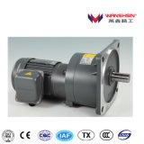 Wanshsin High-Ratio Vertical Set Reducer Motor with 4 Poles