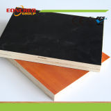 WBP Grade Melamine Laminated Faced Plywood