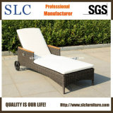 Lounge/ Rattan/ Outdoor/ Wicker Furniture (SC-B8888-H)