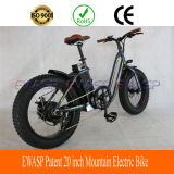 Best 20 Inch Snow Women Electric Mountian Bike for Sale
