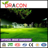 Home Putting Green Artificial Grass for Patio (L-1002)