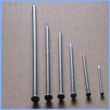 Polished Round Head Common Wire Nail