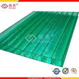 Yuemei UV Protected Plastic Lexan Sheet Twin Wall Hollow Sheet