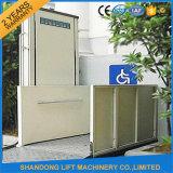 250kgs Outdoor Vertical Wheelchair Lift Price