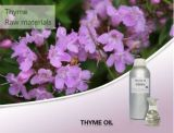 100% Pure Aromatheraputic Thyme Essential Oil for Export